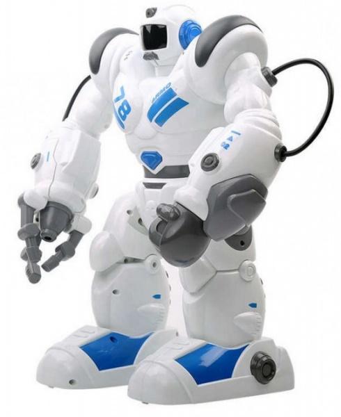 Robohoter RTR